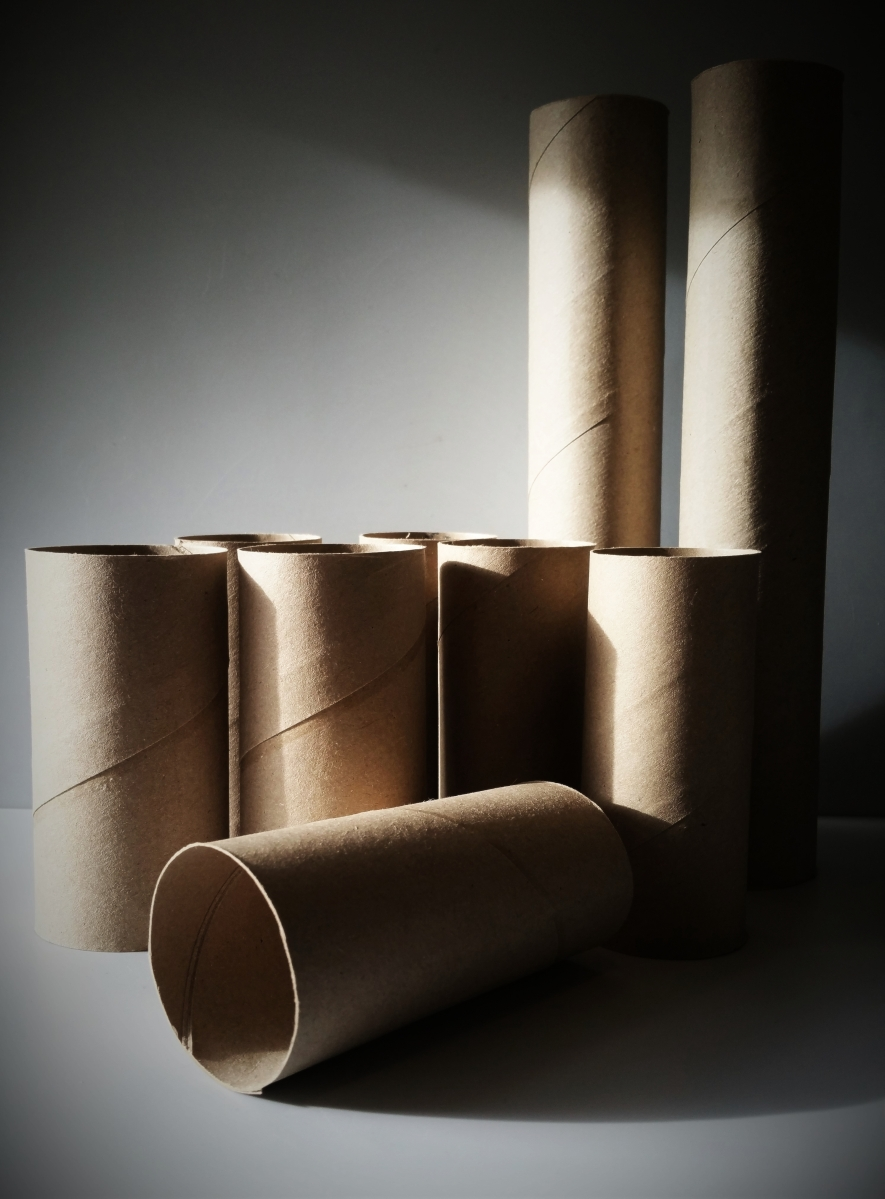how to use toilet paper rolls to start seeds