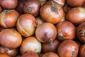 onions-1078149_1280