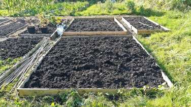 Cleared, dug beds