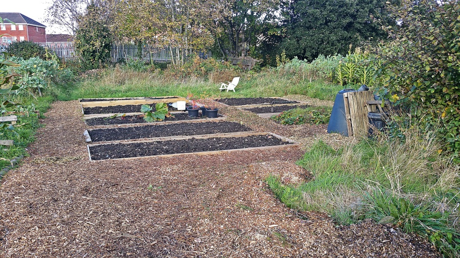 The Allotment - 05 November 2016