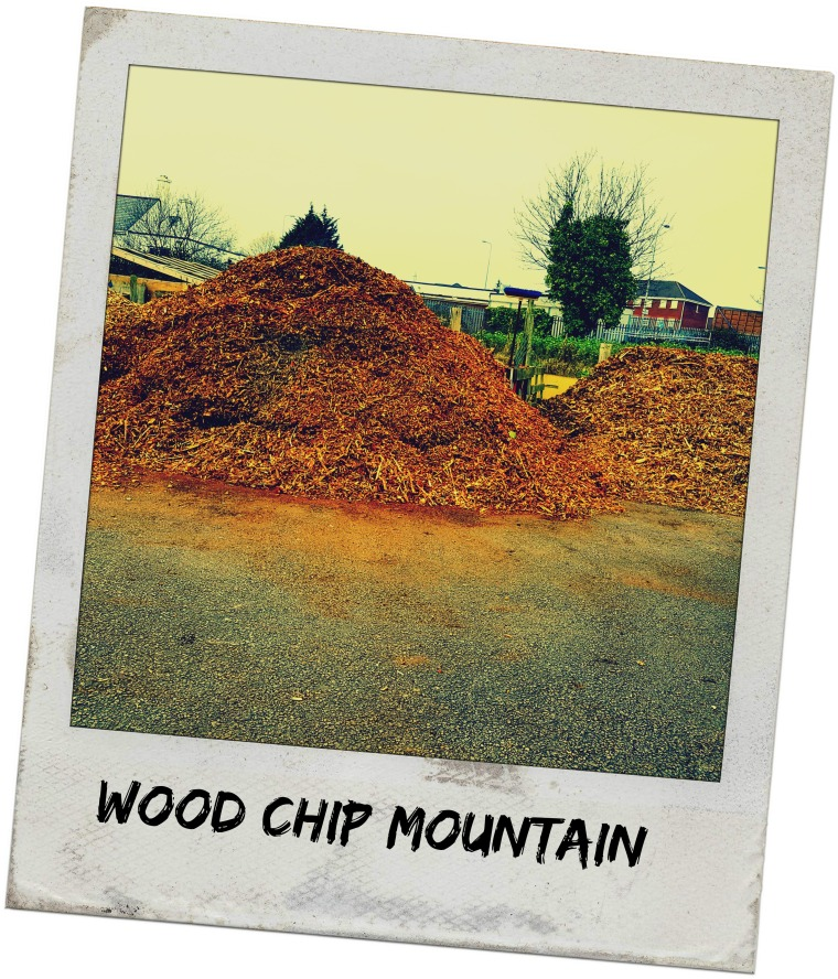 wood-chip-mountain