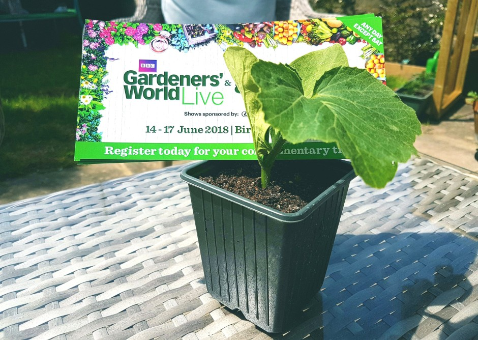 Giveaway Gardeners World Live