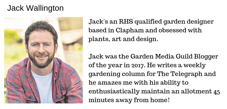 jack allotment