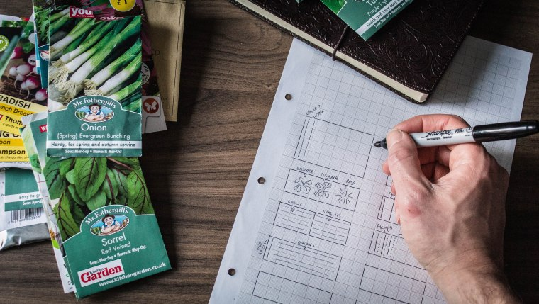 Allotment plan and seeds