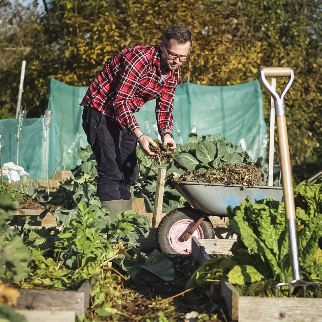 man on allotment garden